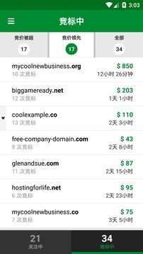 GoDaddy投资者截图