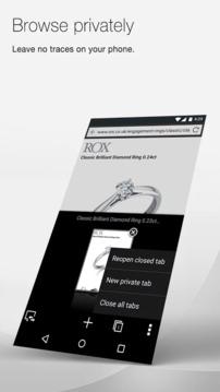 Opera Mini beta 浏览器截图