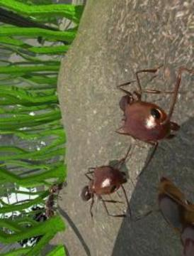 蚂蚁模拟3D截图