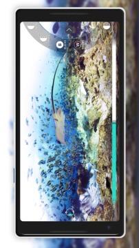 Vuze XR Camera截图