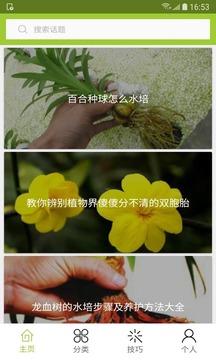 花草种植截图