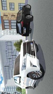 Luxury Offroad Car Driving截图
