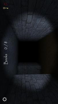 兰德里纳河的地下室截图