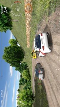 拉力赛车-极限竞速截图