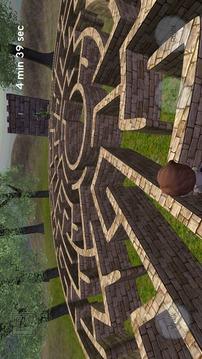 魔幻迷宫 3D截图