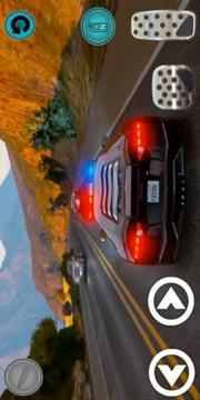 Real Police Car Game 2019 Pro截图