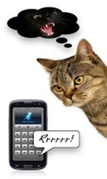 猫语翻译截图