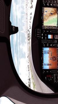 航空公司真实飞行截图