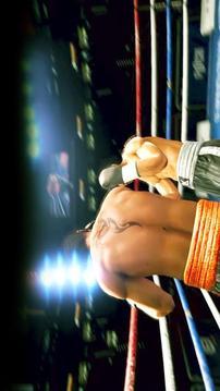 拳击对抗;格斗锦标赛截图