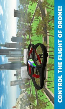 RC Quadcopter Drone Sim 3D截图
