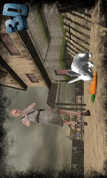 真正的兔子模拟器截图