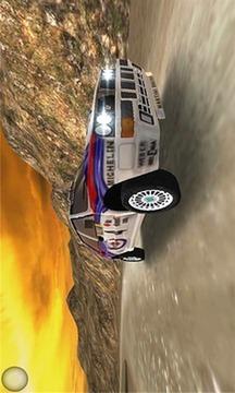拉力赛车越野截图