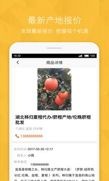 农产品信息网截图