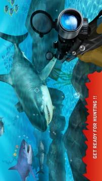 鲨鱼猎杀者截图