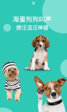 狗语翻译截图