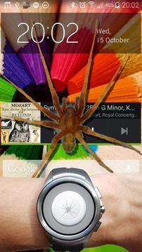 蜘蛛在手机好笑的笑话截图