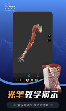 解剖大师截图