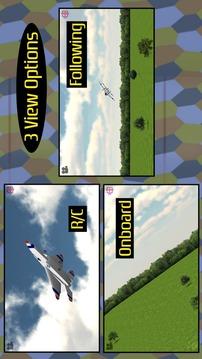 模拟遥控飞机截图