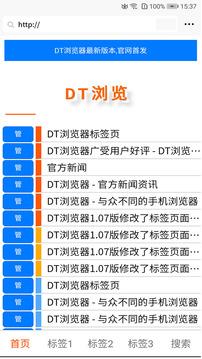 DT浏览器截图