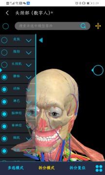 医维度人体解剖截图
